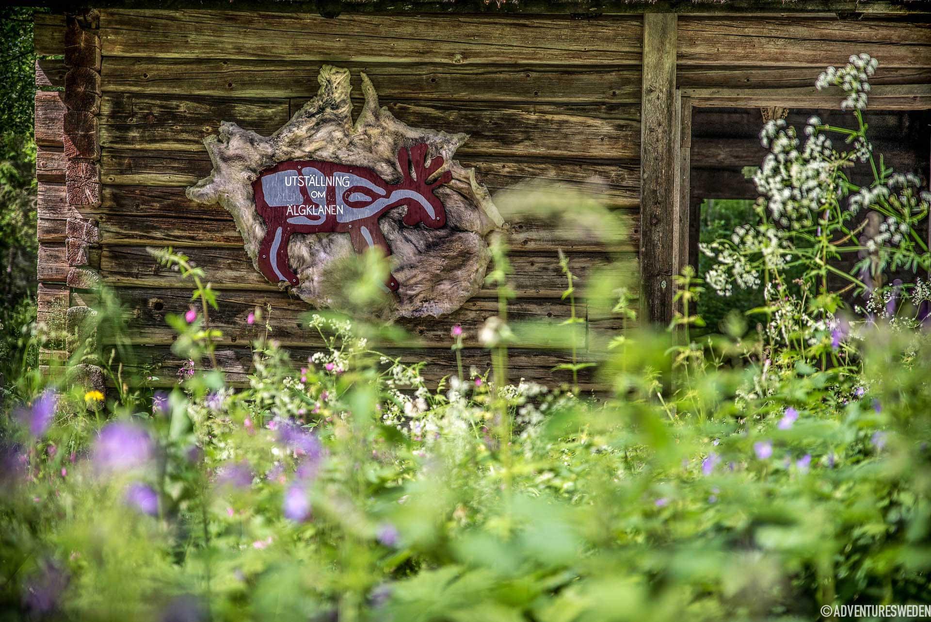 Forntida utställning i Glösa | Foto: Erika Willners