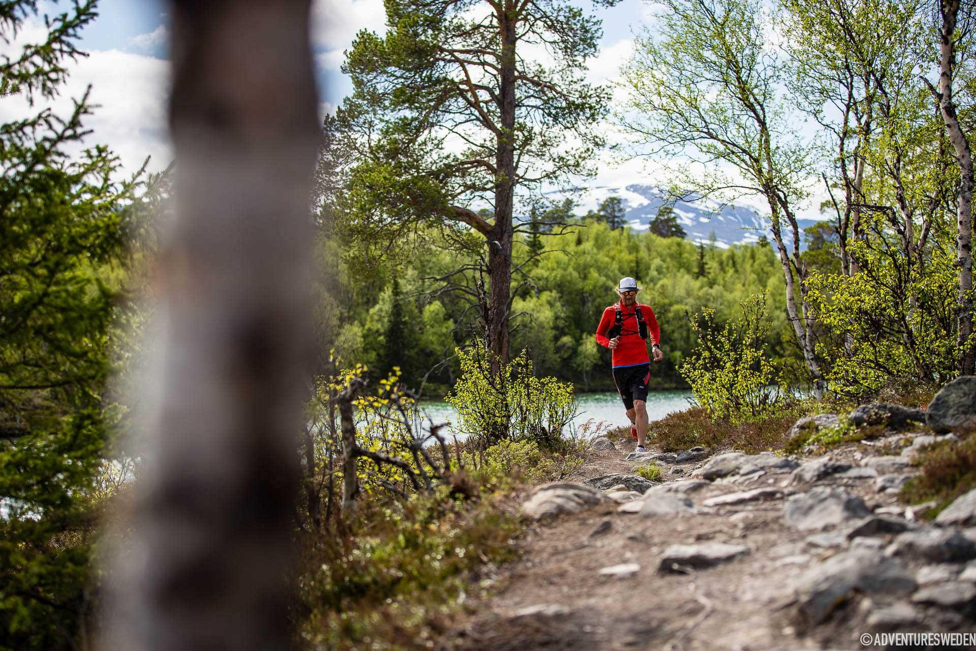 Löpning vid Blanktjärn, Vålådalen | Foto: Anette Andersson