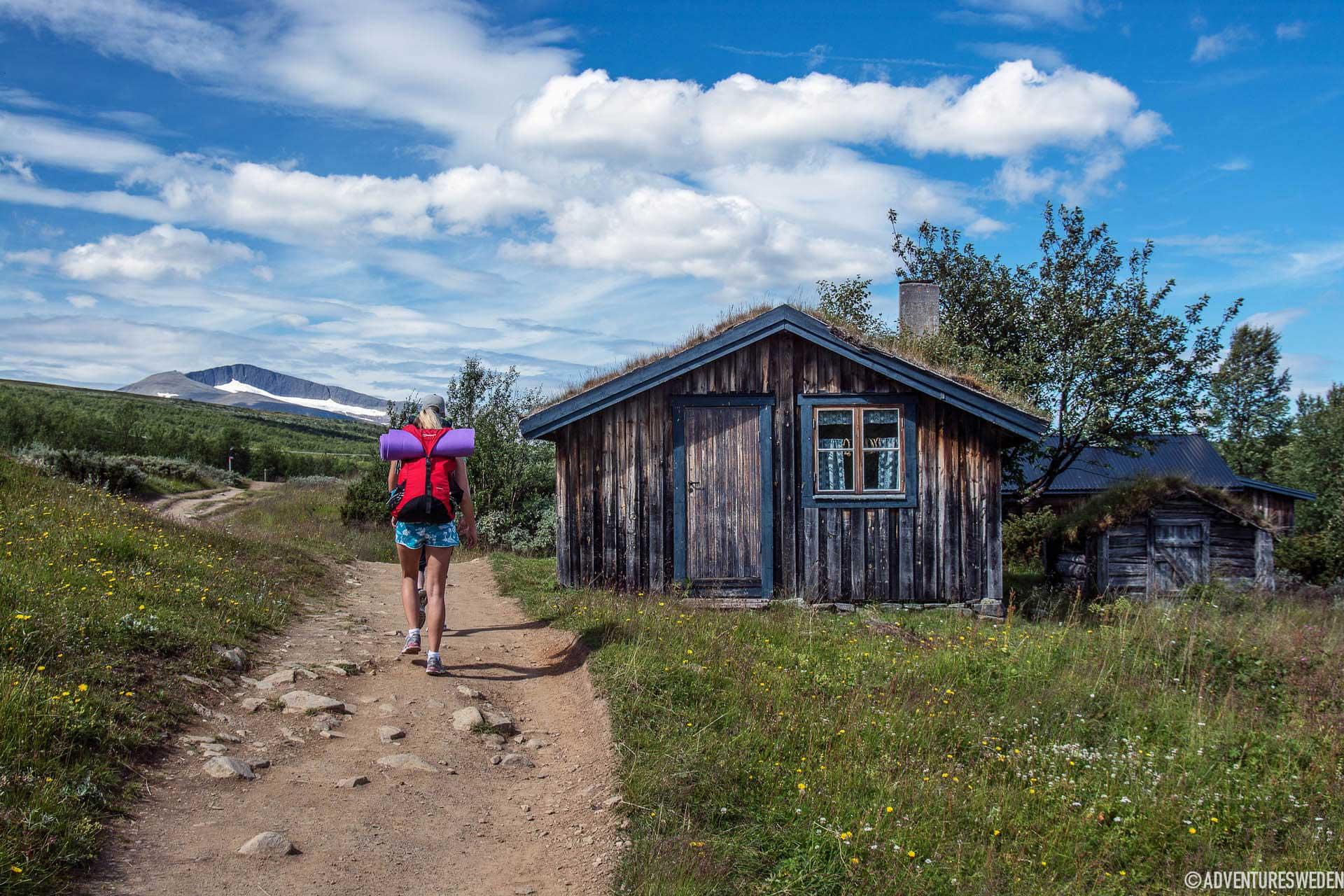 Helags – vandring vid fäbodar | Foto: Erika Willners