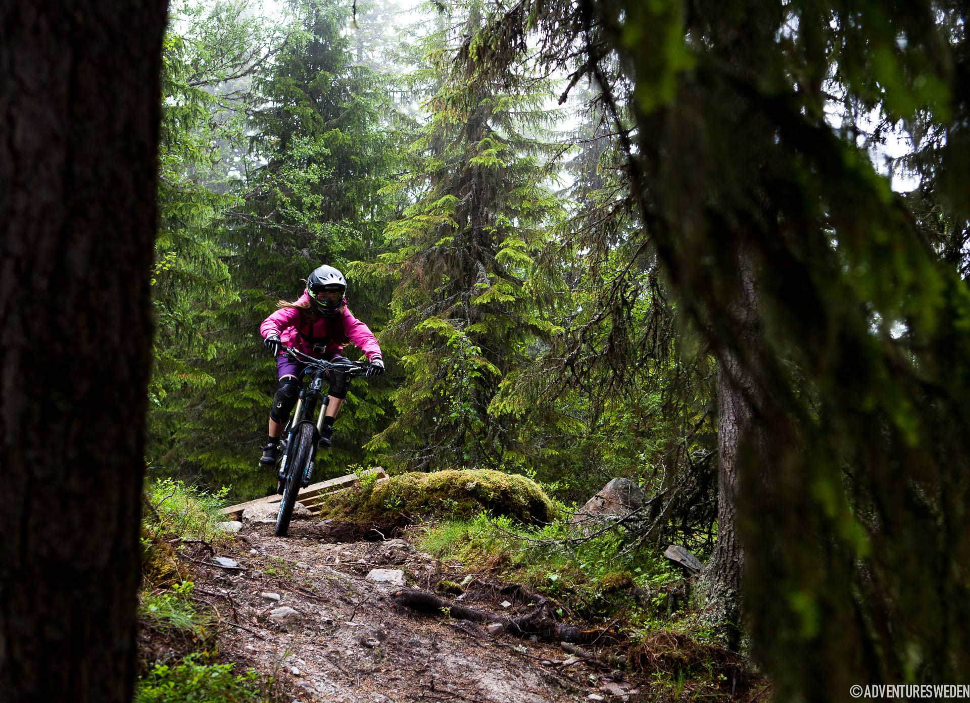 Downhill i Lofsdalen | Foto: Callum Jelley
