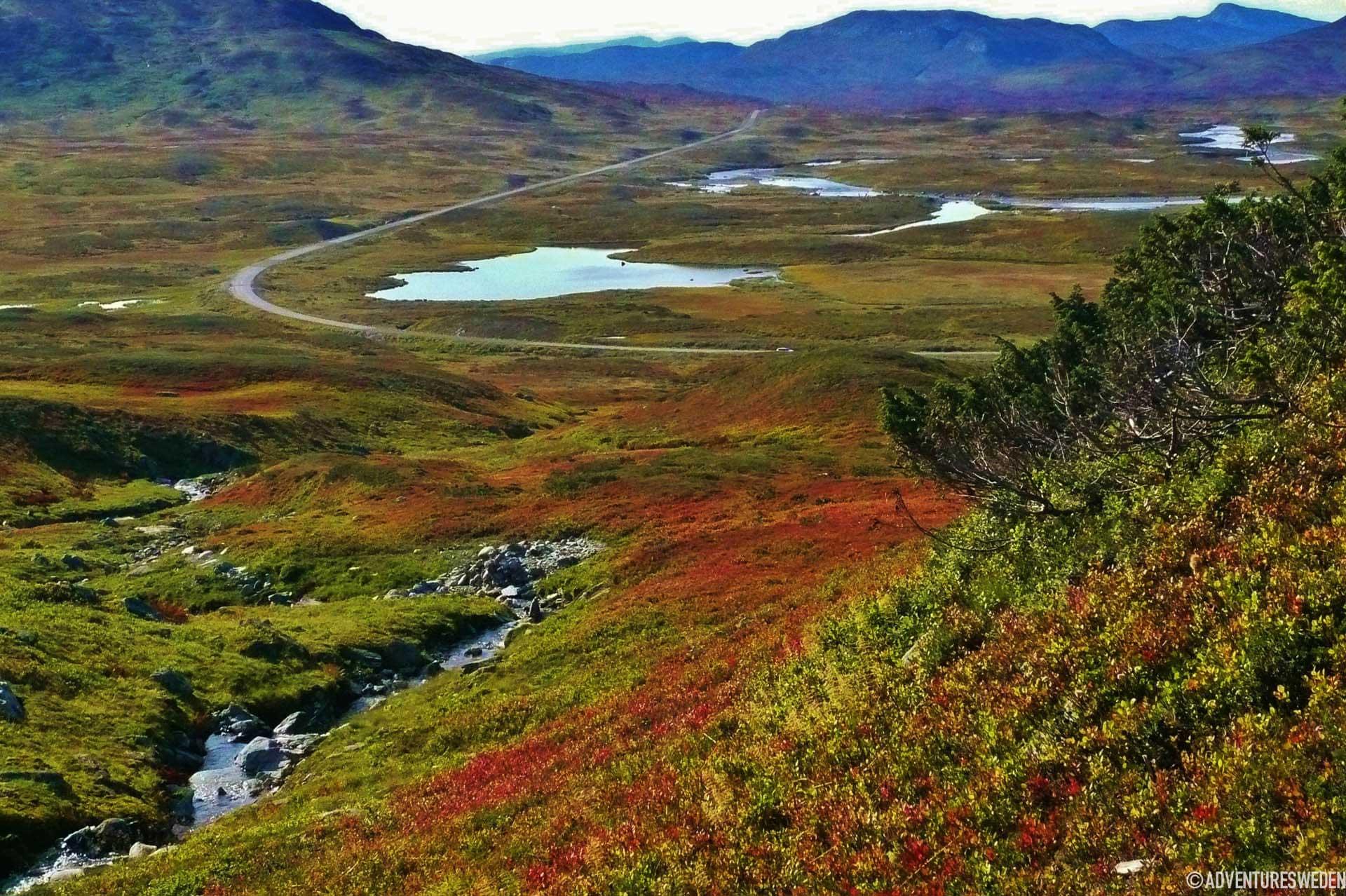 Vildmarksvägen| Foto: Madeleine Aaras