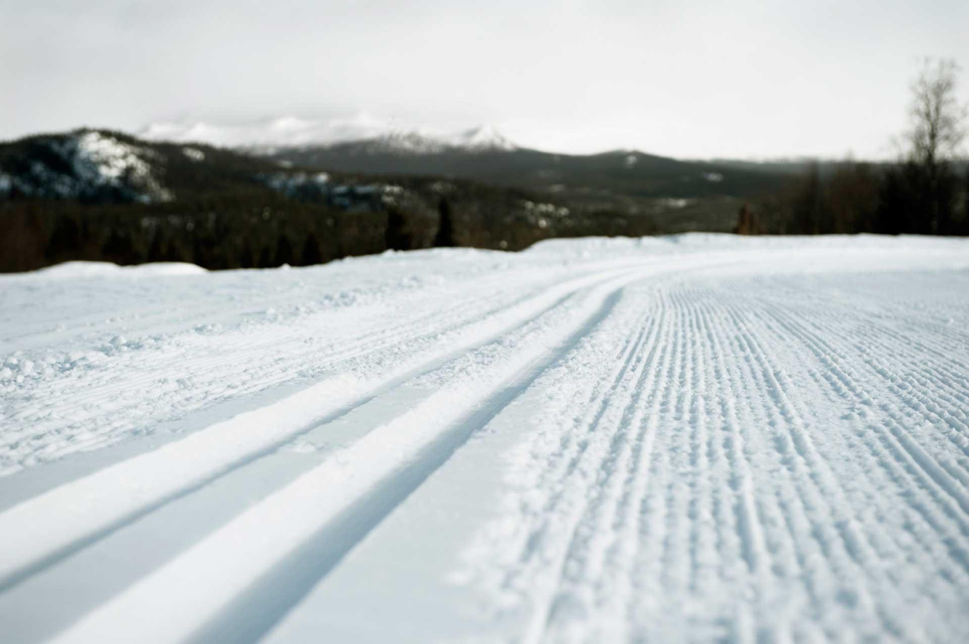 Cross country tracks   Photo: Martin Söderqvist