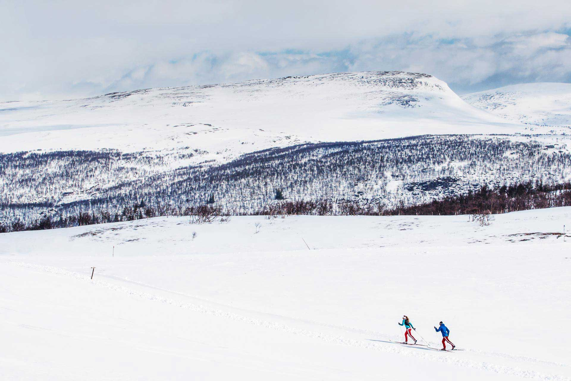 Cross Country Skiing Sweden | Photo: Björn Arnemo