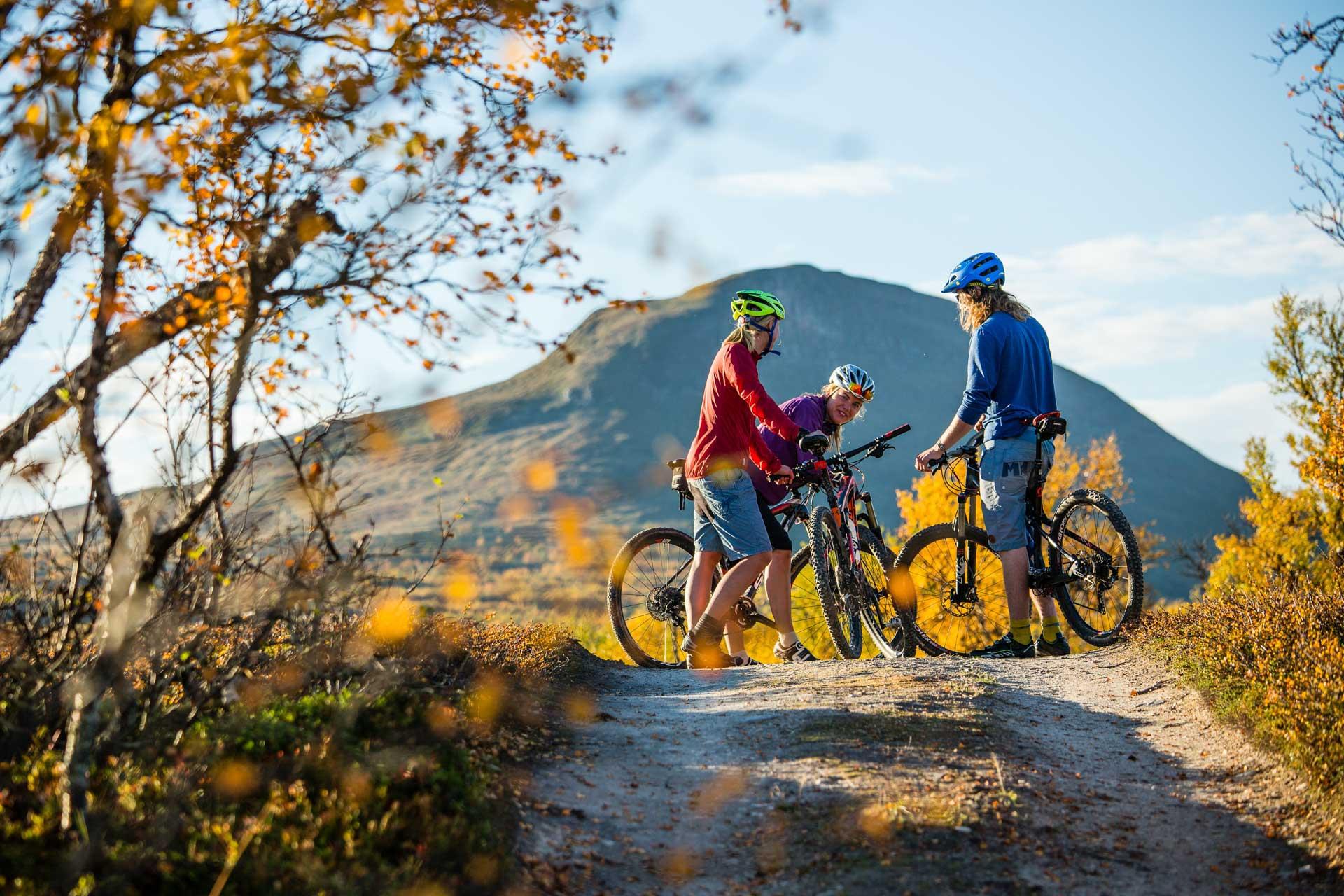 Biking in Funäsfjällen   Photo: Anette Andersson