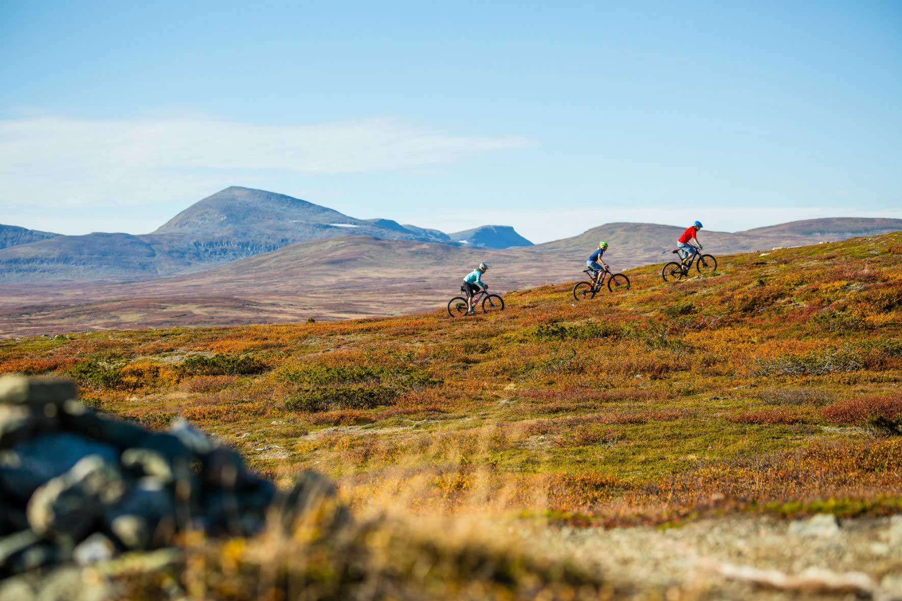 Mountainbike in Funäsfjällen