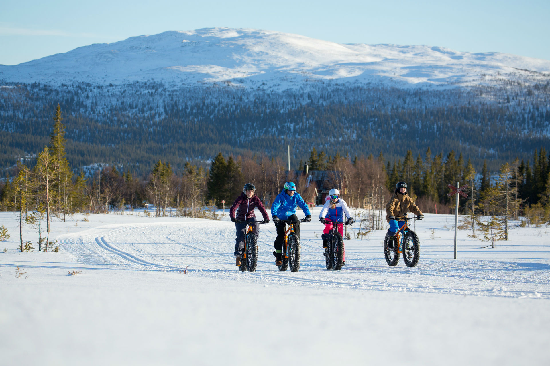 Fatbike in Are | Adventure Sweden