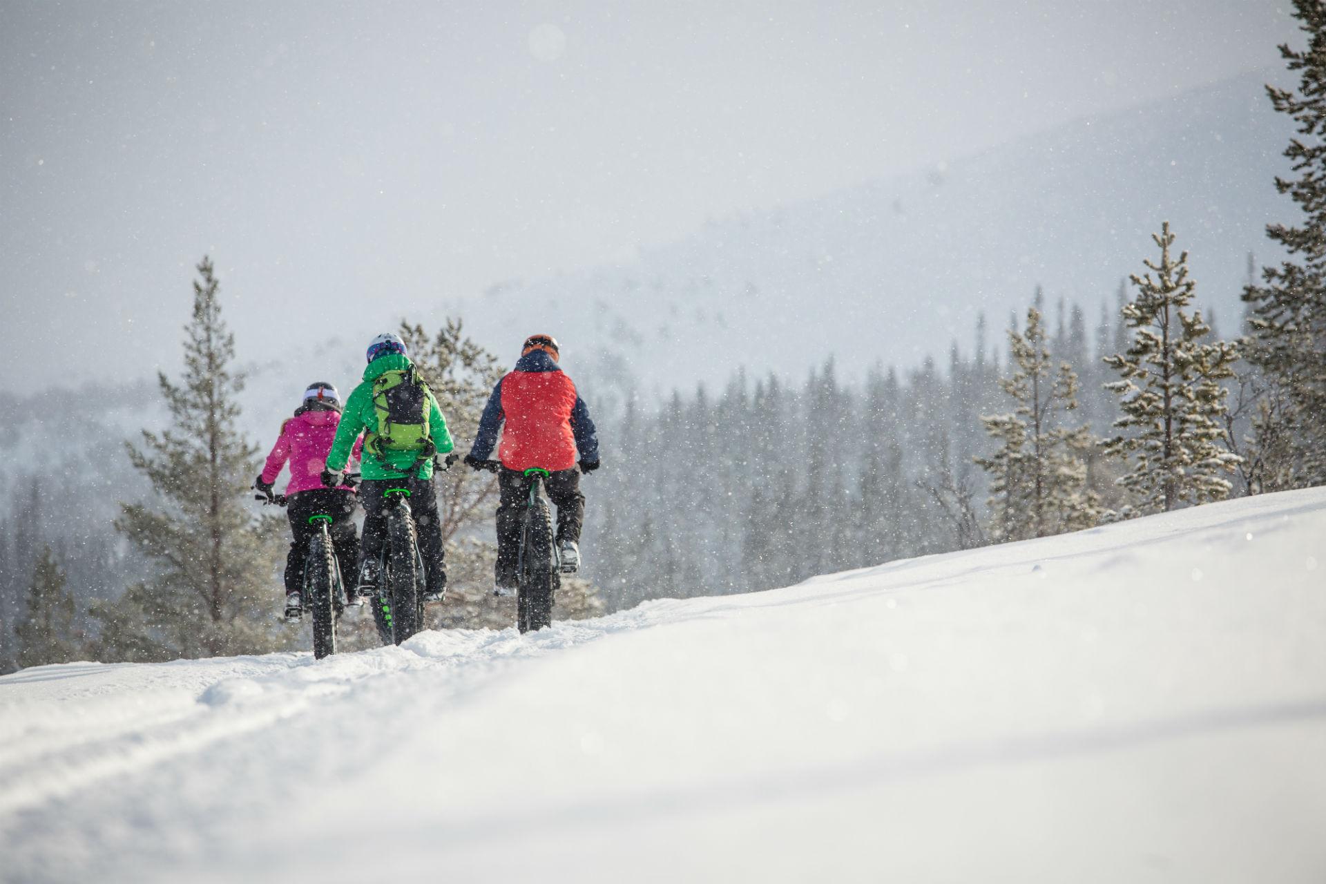 Fatbiking towards Lofsdalen