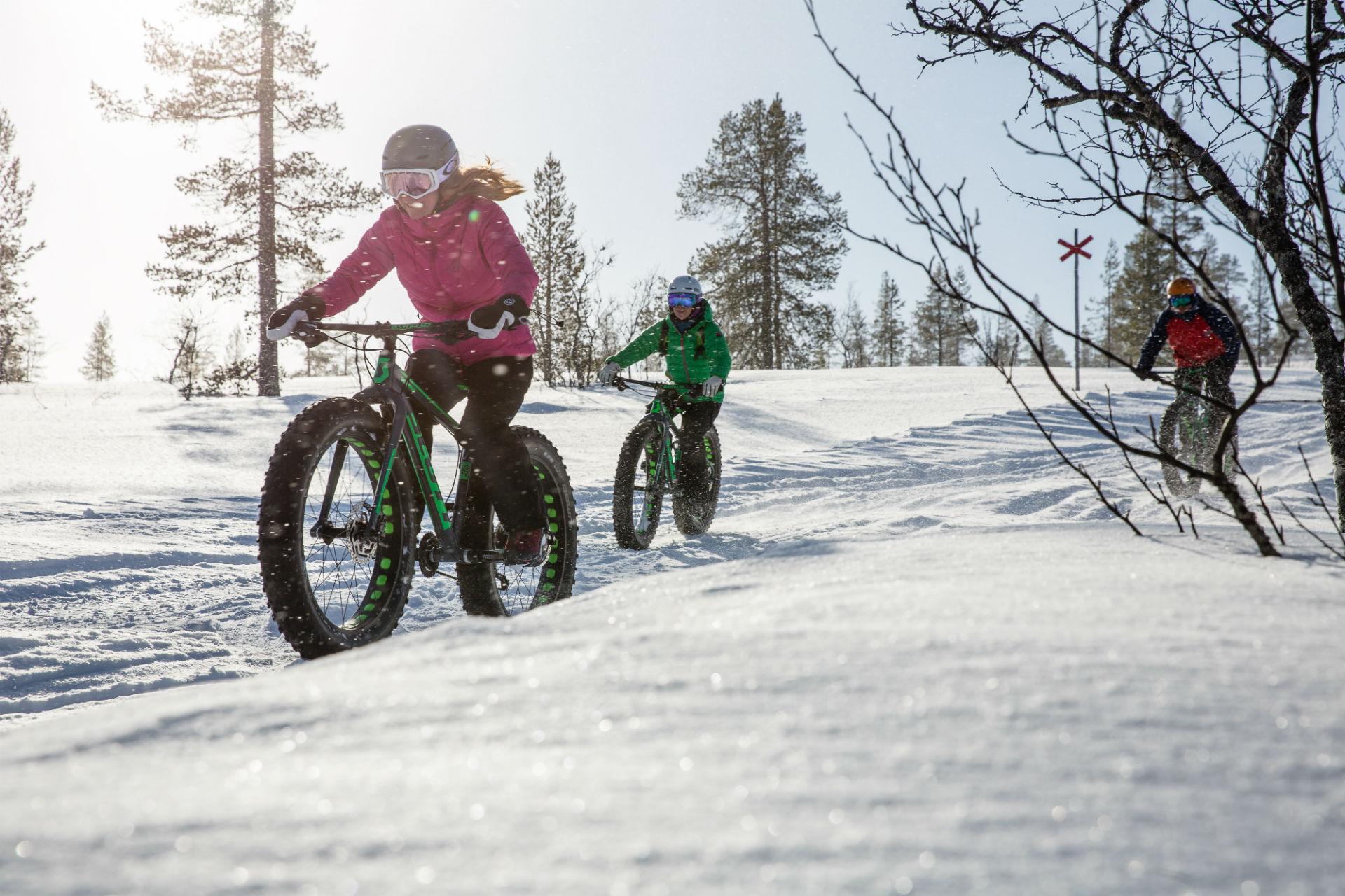 Wintercycling fatbikes Lofsdalen, AdventureSweden.