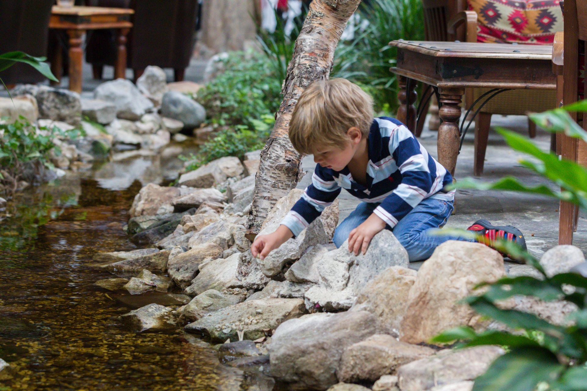Kille vatten vinterträdgård storhogna